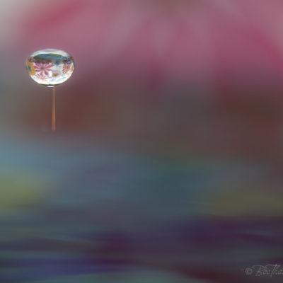 Tavla - Besokare från planeten FantasiaTavlor - vattenkonst - Besokare från planeten Fantasia