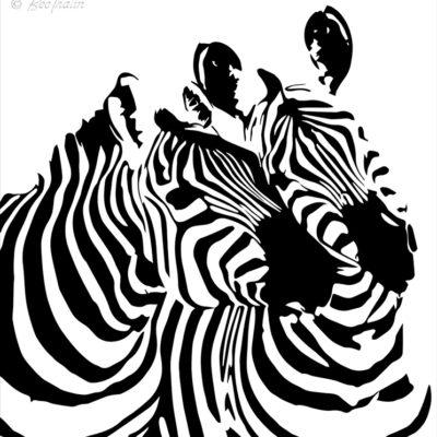 Tavlor - art - Zebragos