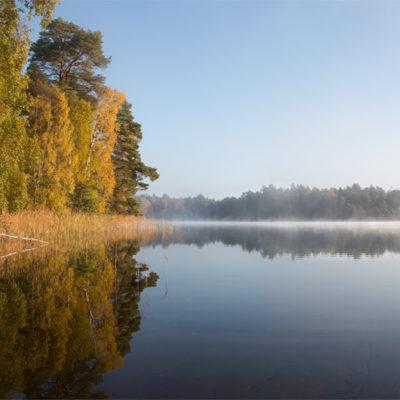 Tavlor - natur - Dimma över Storsjön Värmdö 1
