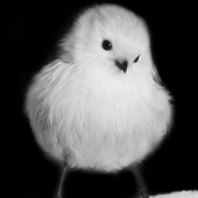 Tavlor - fåglar - Dunbollen - stjärtmes