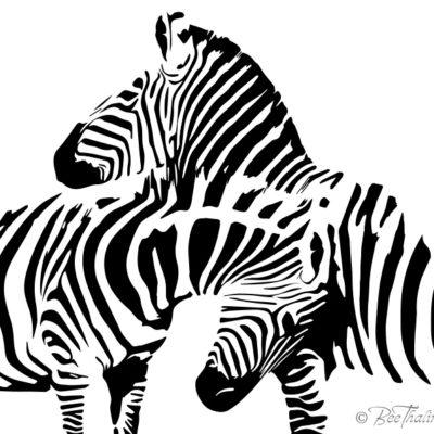 tavlor - art - Zebrorna