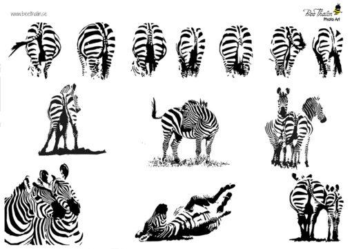 Bordstabletter zebra